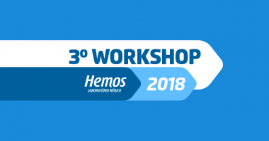 Workshop Hemos 2018